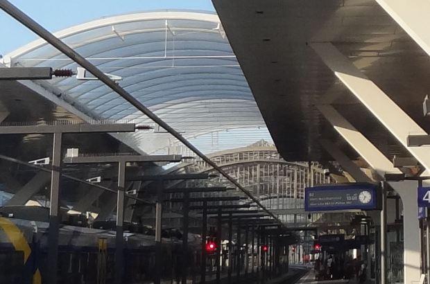 Un detalle: la estructura de acero y vidrio al fondo, y delante su extensión